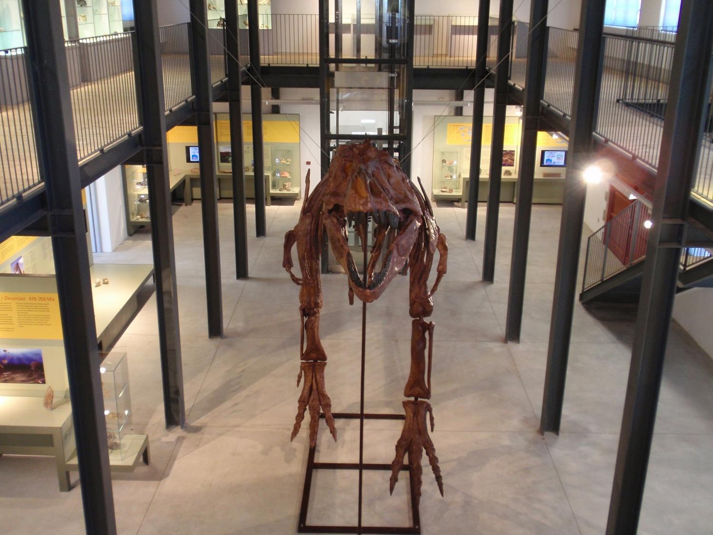 """Museo dei Palæoambienti Sulcitani """"E. A. Martel"""""""